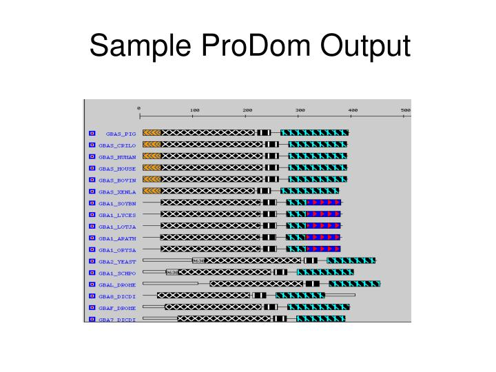 Sample ProDom Output