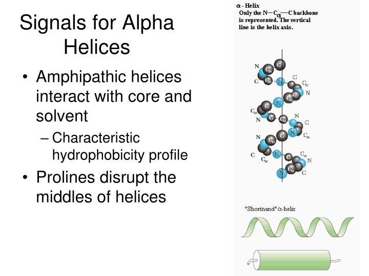 Signals for Alpha Helices