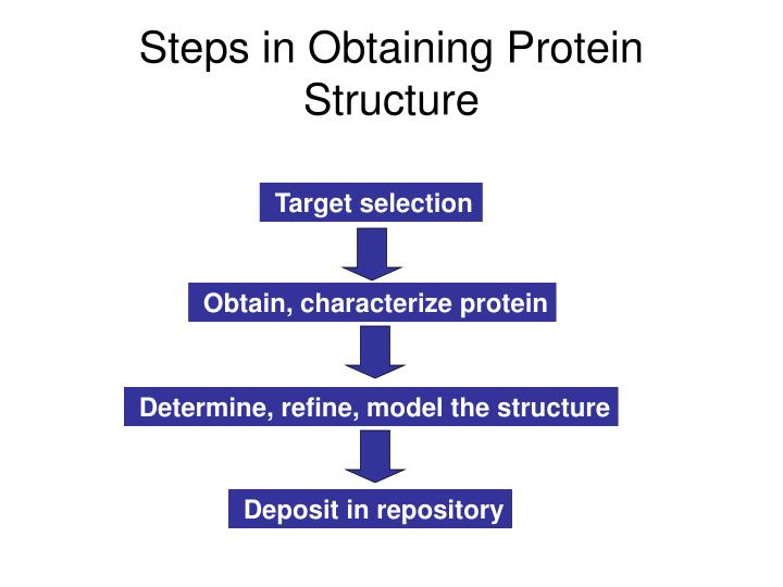 Steps in Obtaining Protein Structure