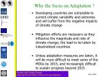 why the focus on adaptation