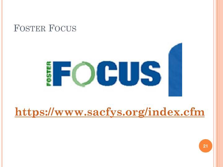 Foster Focus