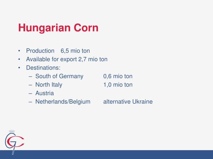 Hungarian Corn