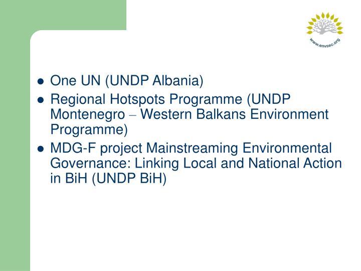 One UN (UNDP Albania)