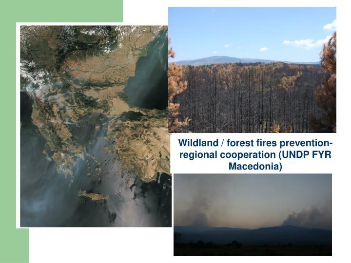 Wildland / forest fires prevention- regional cooperation (UNDP FYR Macedonia)