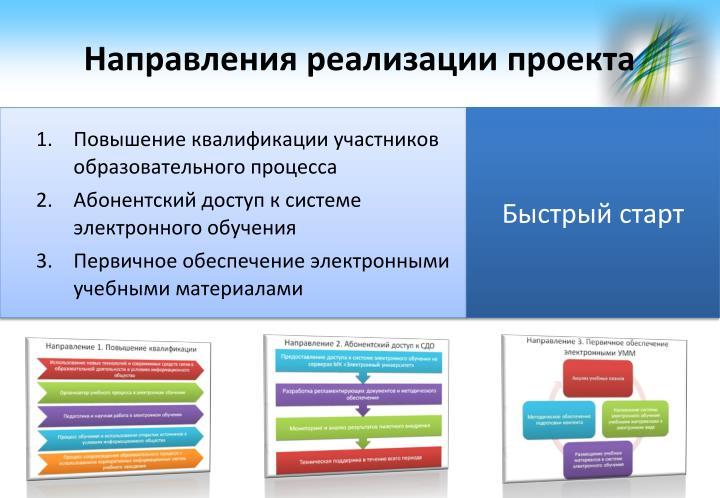 Направления реализации проекта