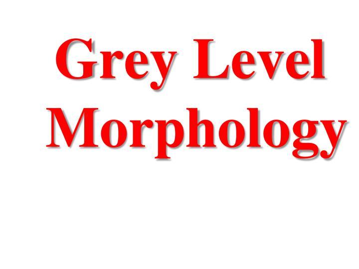 Grey Level Morphology
