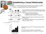 establishing a causal relationship1