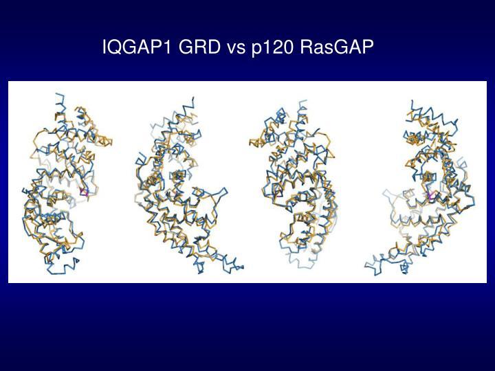 IQGAP1 GRD vs p120 RasGAP