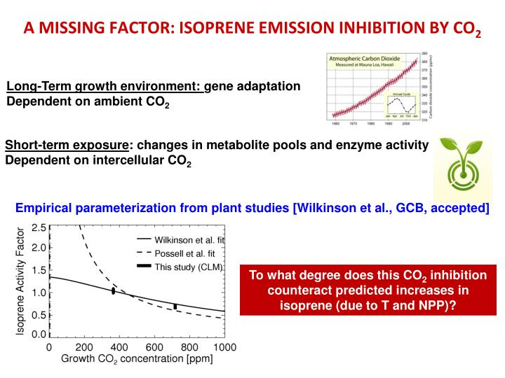 A MISSING FACTOR: ISOPRENE EMISSION INHIBITION BY CO