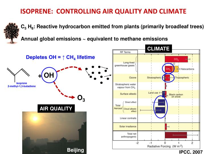 Isoprene controlling air quality and climate