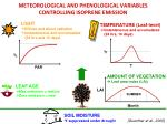 meteorological and phenological variables controlling isoprene emission