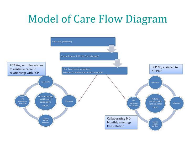 Model of Care Flow Diagram