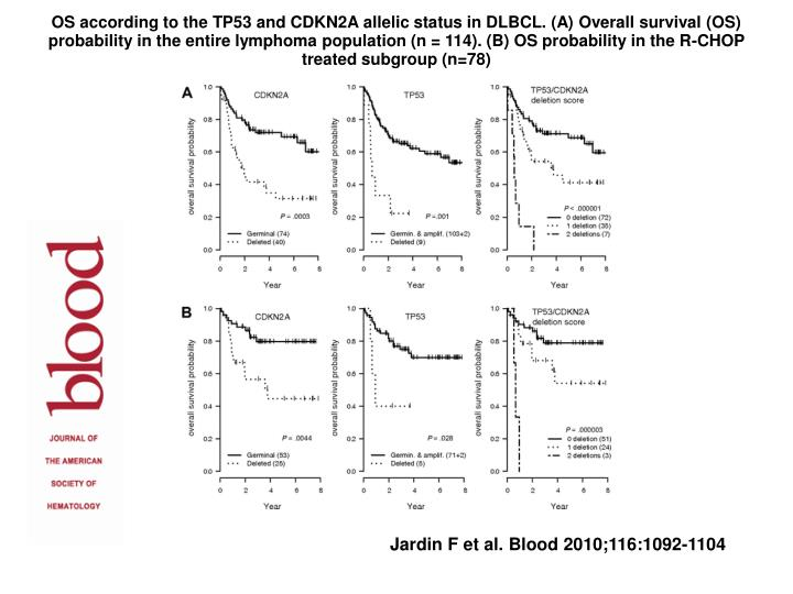 OS according to the TP53 and CDKN2A allelic status in DLBCL. (A) Overall survival (OS) probability in the entire lymphoma population (n = 114). (B) OS probability in the R-CHOP treated subgroup (n=78)