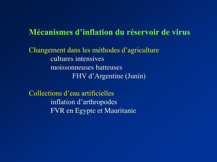 Mécanismes d'inflation du réservoir de virus
