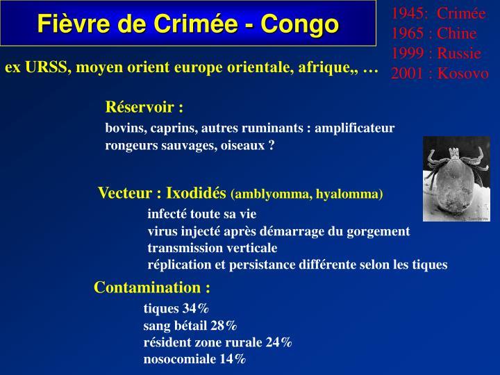 Fièvre de Crimée - Congo