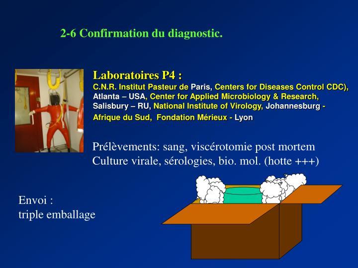 2-6 Confirmation du diagnostic.