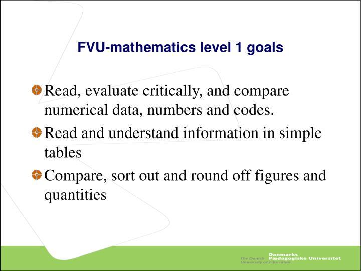 FVU-mathematics level 1 goals