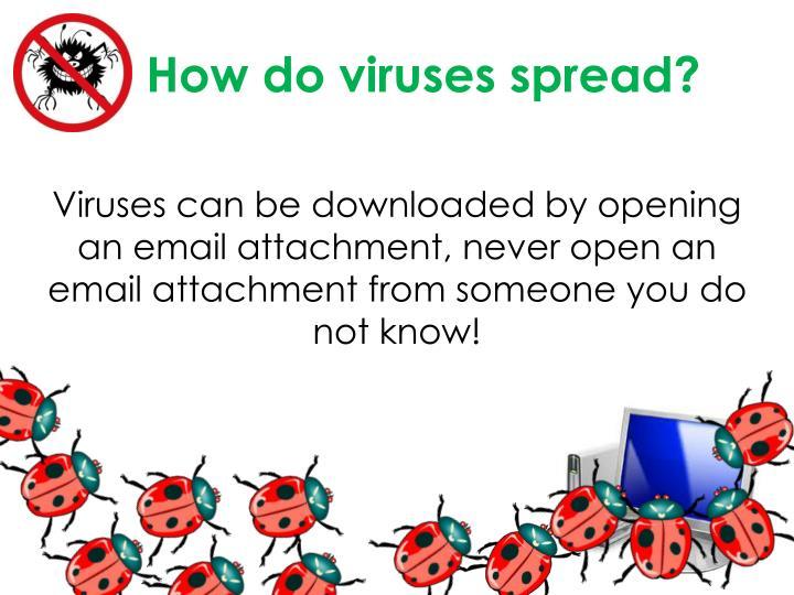 How do viruses spread?