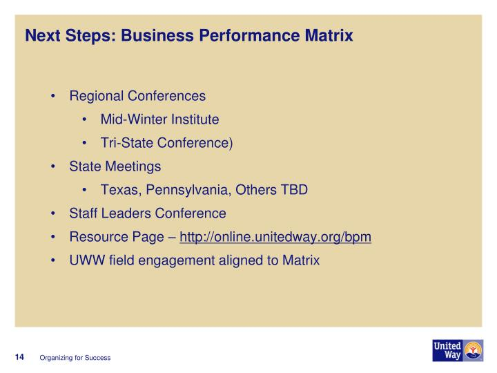 Next Steps: Business Performance Matrix