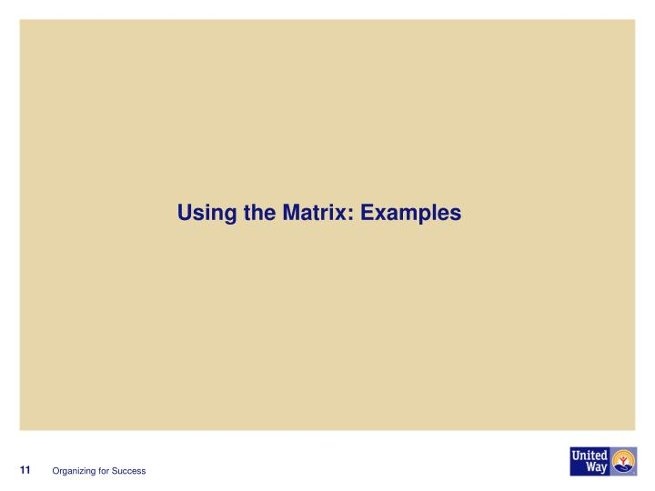 Using the Matrix: Examples