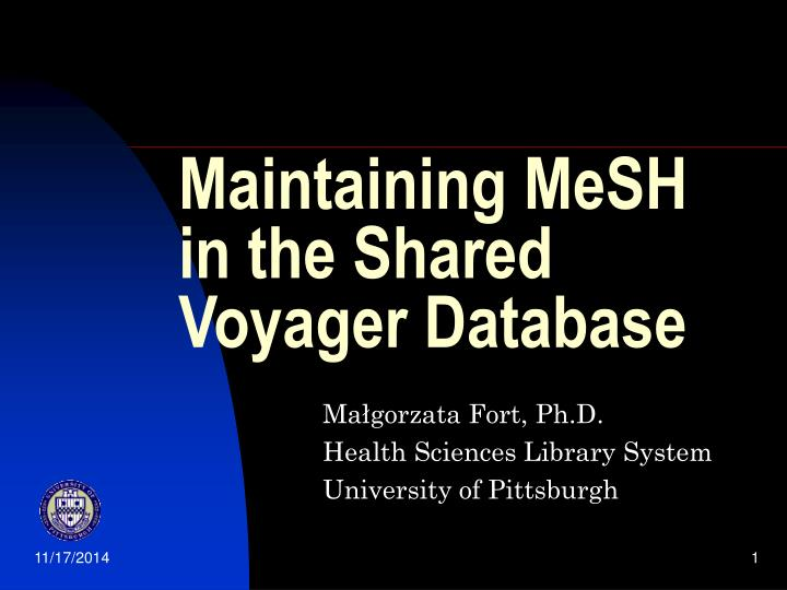 Maintaining MeSH in the Shared Voyager Database