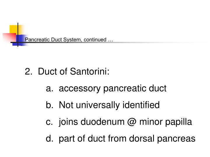 Pancreatic Duct System, continued …
