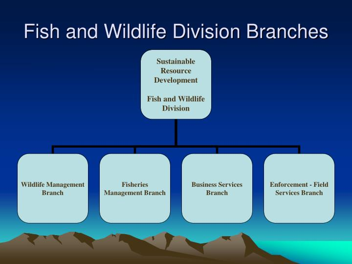 Fish and Wildlife Division Branches