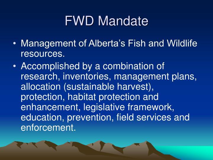 FWD Mandate
