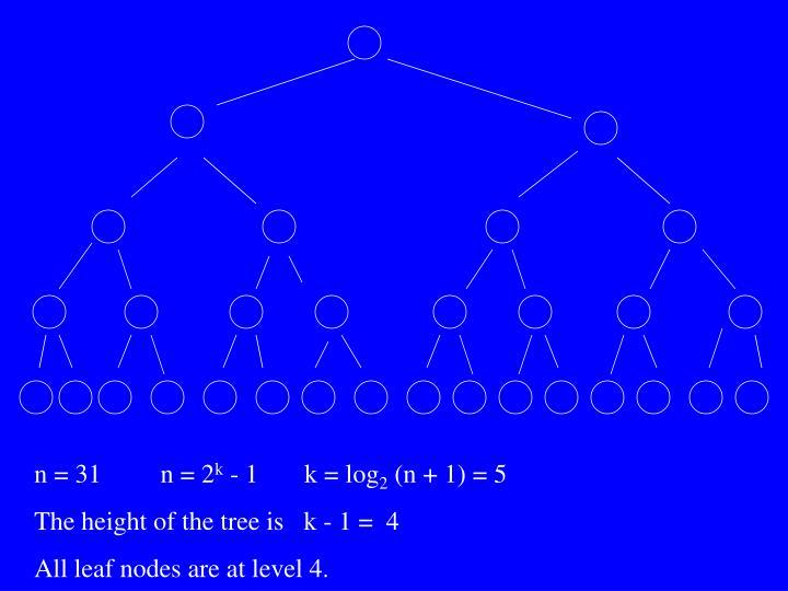 n = 31         n = 2