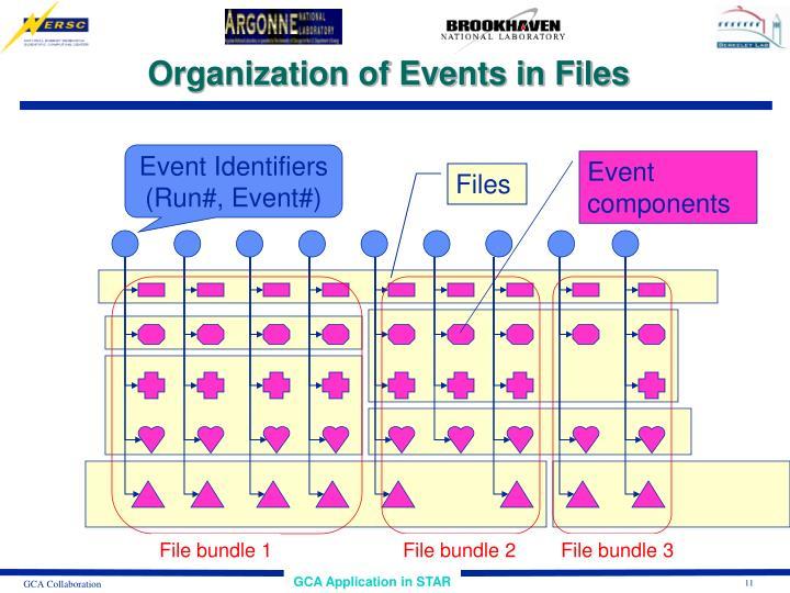 Event Identifiers
