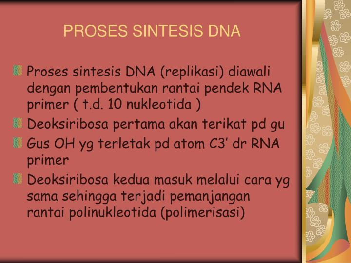 PROSES SINTESIS DNA