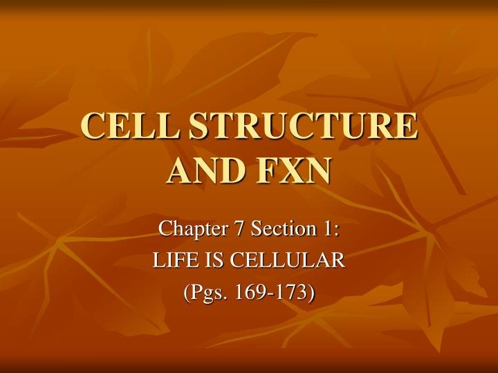 CELL STRUCTURE AND FXN