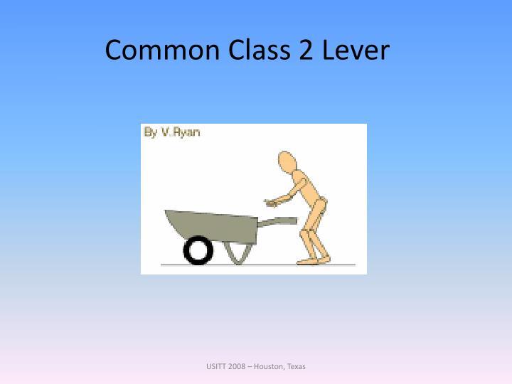 Common Class 2 Lever