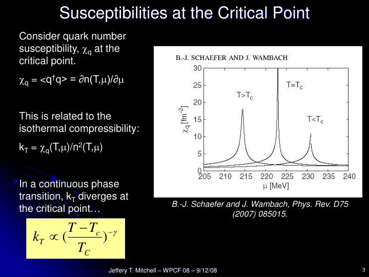 Susceptibilities at the Critical Point