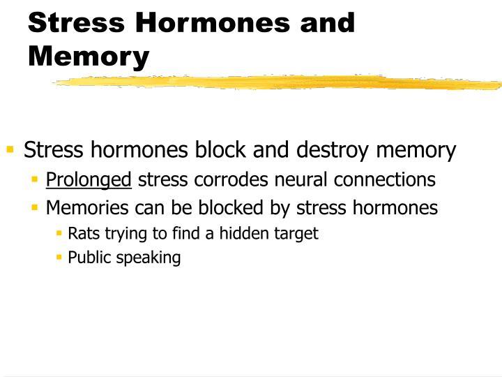 Stress Hormones and Memory