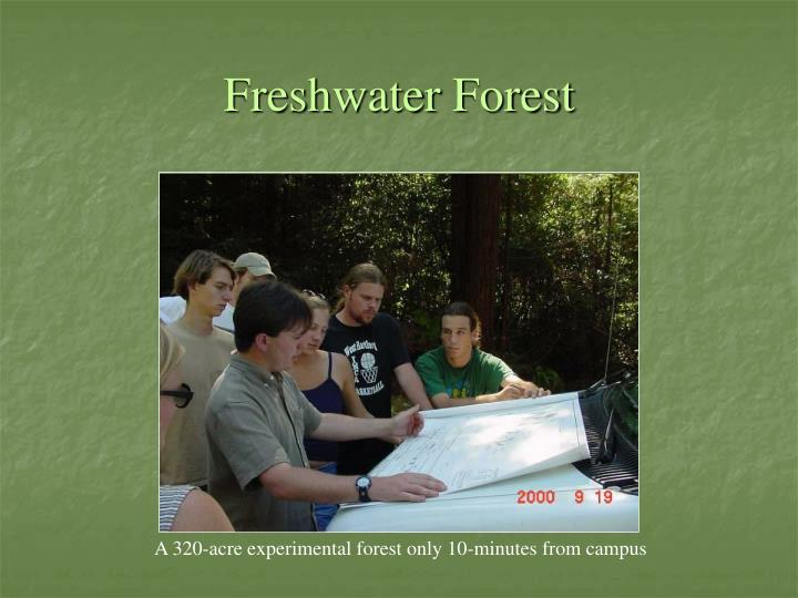 Freshwater Forest
