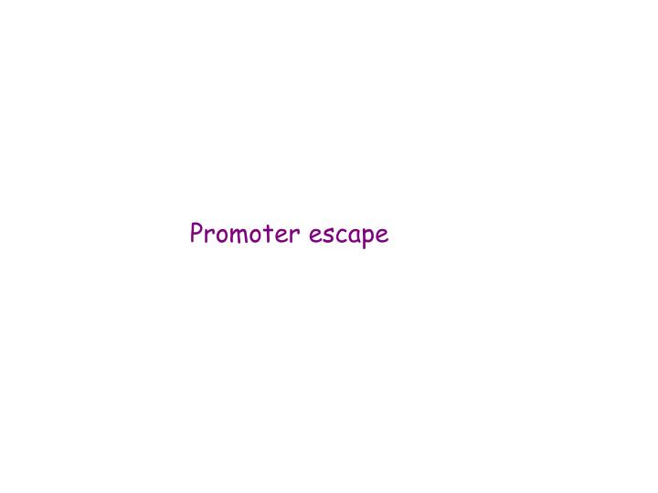 Promoter escape