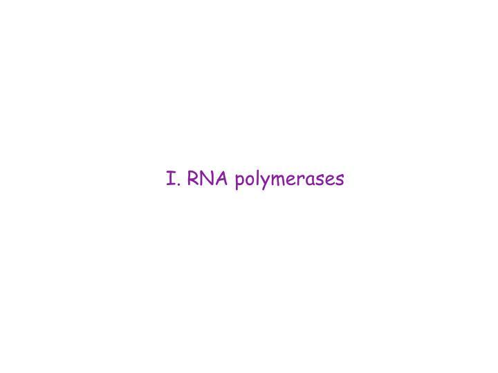 I. RNA polymerases