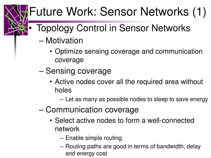 Future Work: Sensor Networks (1)