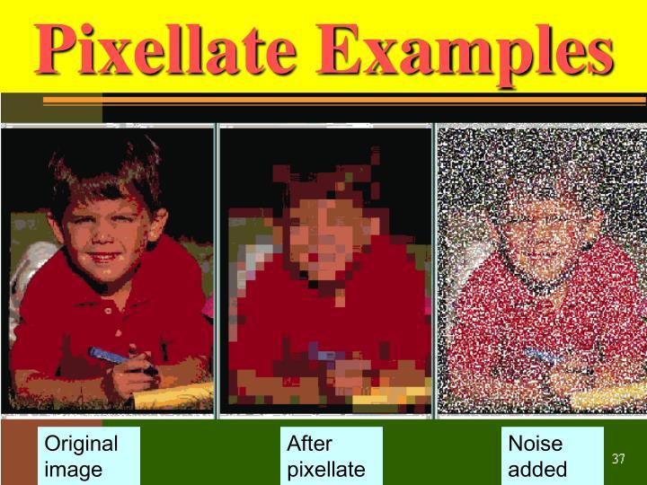 Pixellate Examples