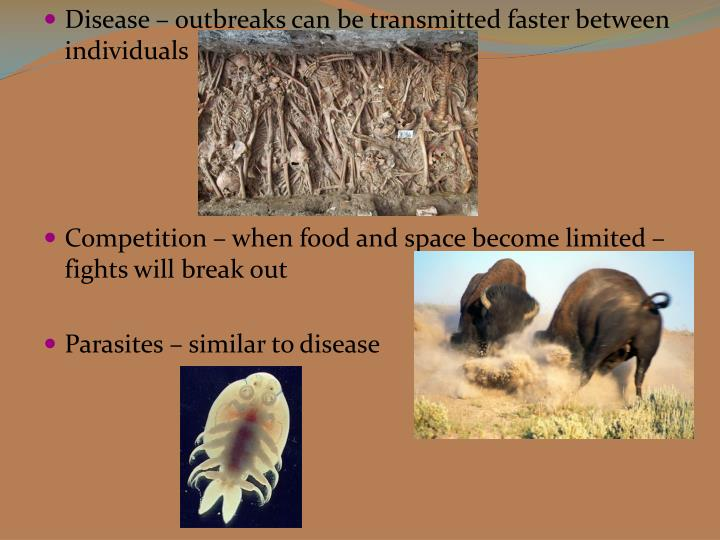 Disease – outbreaks can be transmitted faster between individuals