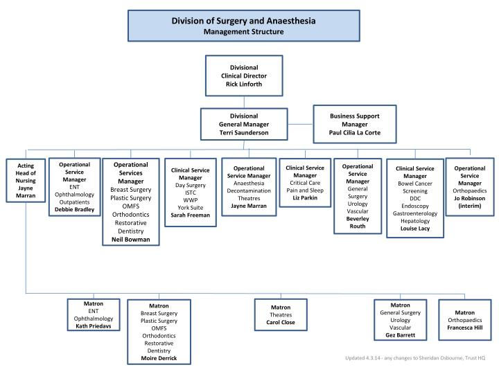Division of Surgery and Anaesthesia
