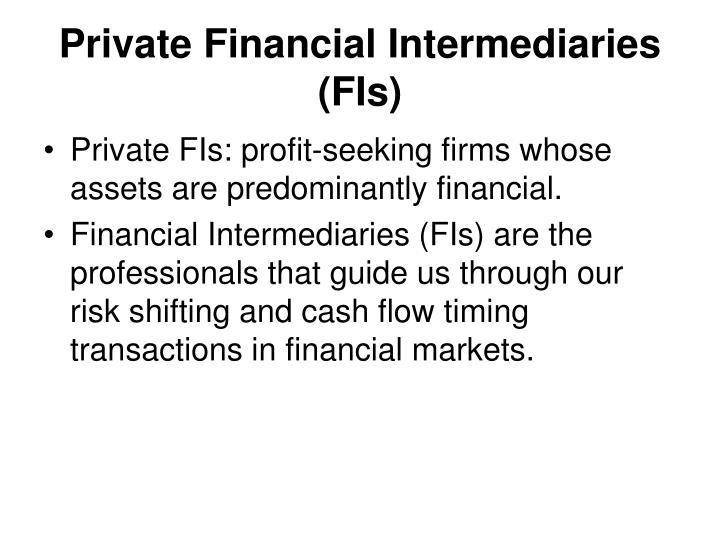 Private Financial Intermediaries (FIs)