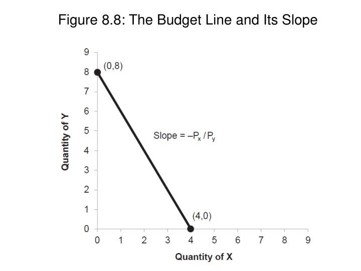 Figure 8.8: The Budget Line and Its Slope