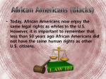 african americans blacks1
