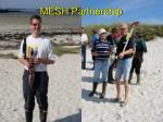 mesh partnership