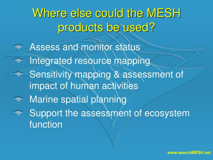 Where else could the MESH products be used?