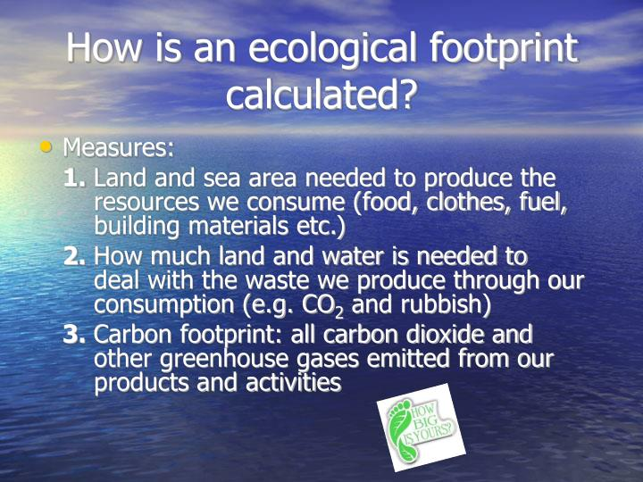 How is an ecological footprint calculated?