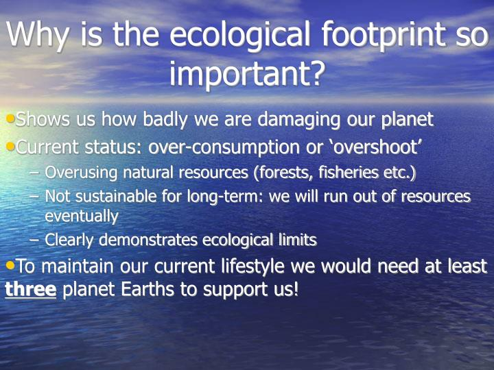 Why is the ecological footprint so important?