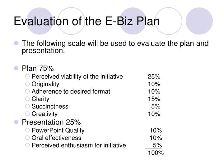 Evaluation of the E-Biz Plan